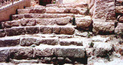 Actual Steps Jesus Walked after Trial before Caiaphas (Photo by Lyn - June 2000)
